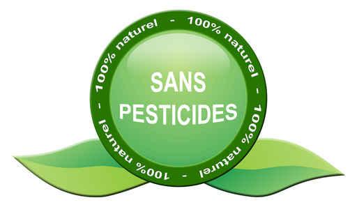 Les légumes bios et les fruits bio sont exempts de pescticides