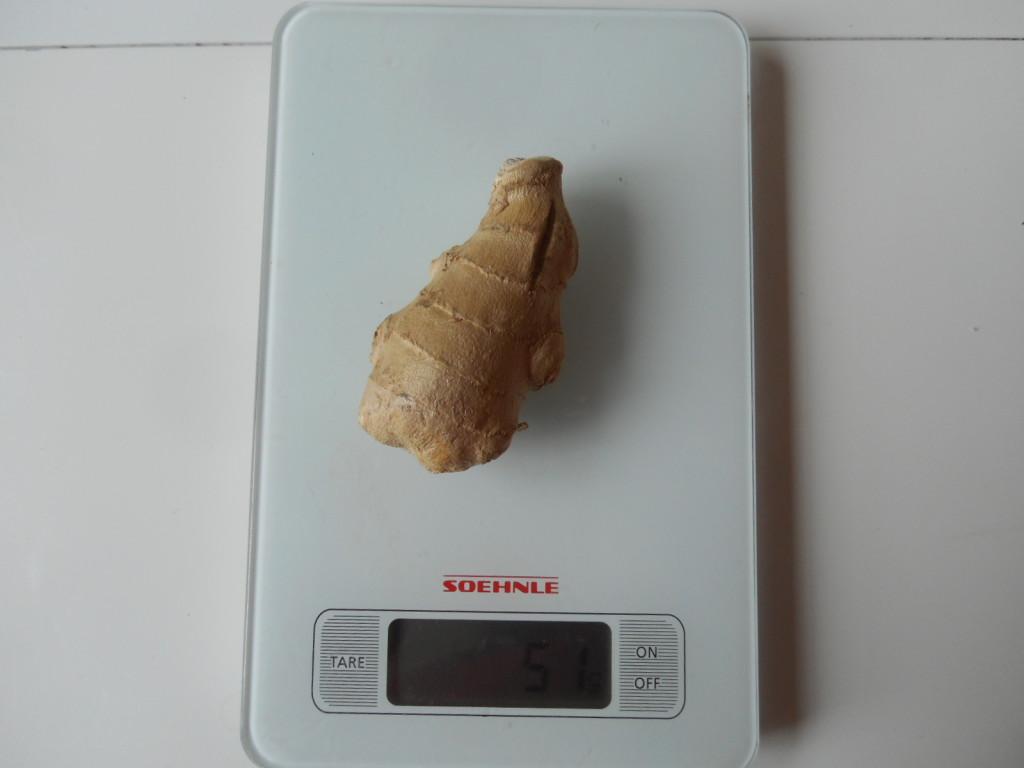 gingembre