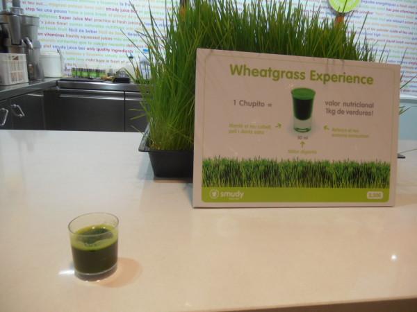 effets secondaires du jus d'herbe de blé